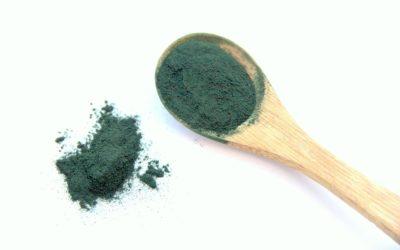 A spirulina azaz a kék – zöld alga!